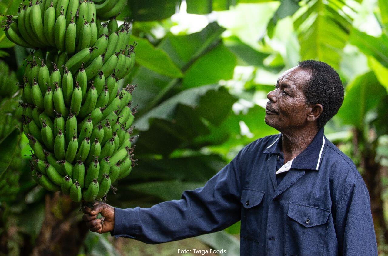 Twiga Foods aus Kenia: Die 100-Millionen-Dollar-Idee